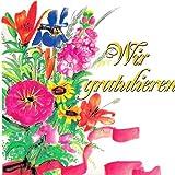 16 Ständchen und Glückwünsche (CD) die dominos und das orchester h. w. kleve - wir gratulieren dem geburtstagskind tölzer knabenchor,ltg. gerhard schmidt gaden - herzlichen glückwunsch...