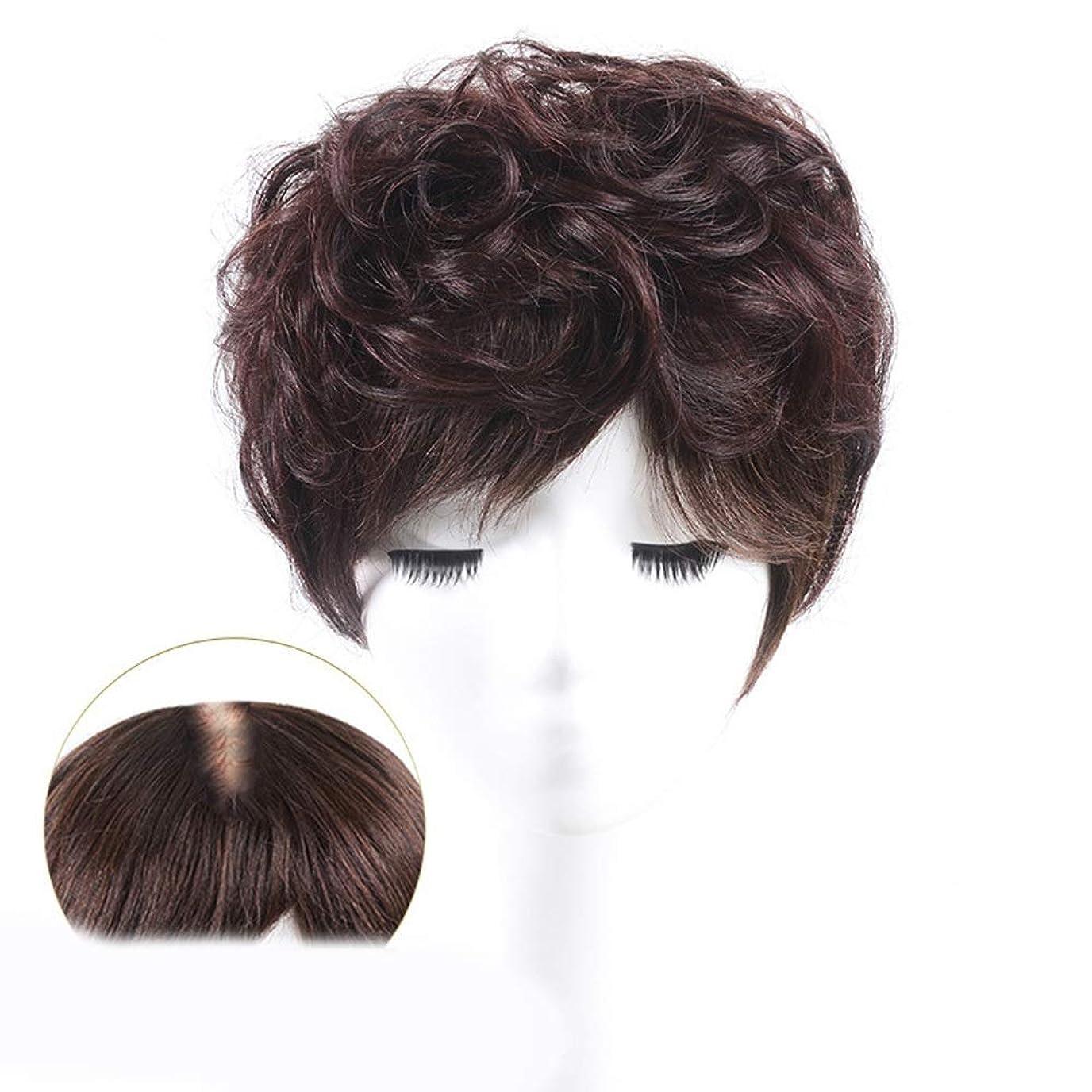 ポンプスローリーフレットYrattary 100%本物の髪天然ふわふわショートカーリーヘアエクステンションカバー白髪ウィッグパーティーかつら (Color : Dark brown, サイズ : 15cm)