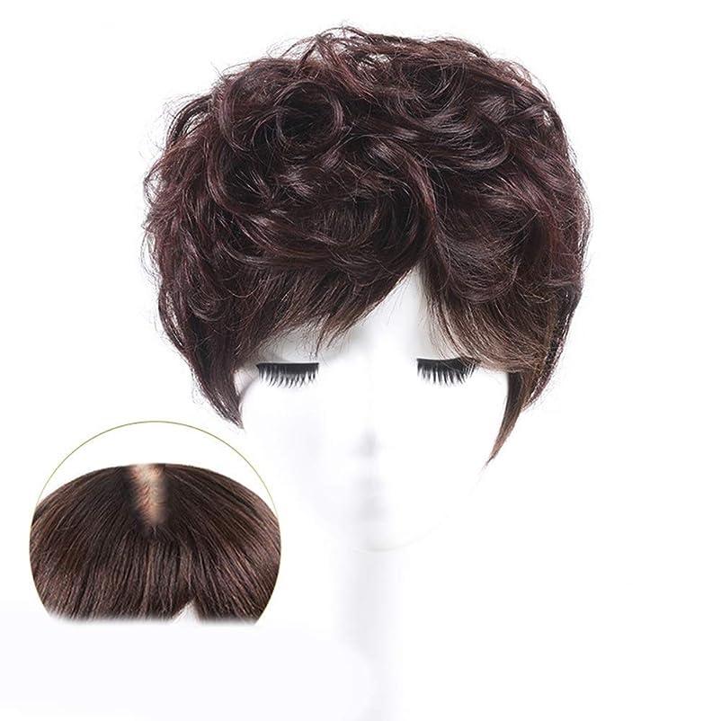 コンパス才能サンダースかつら 100%本物の髪天然ふわふわショートカーリーヘアエクステンションカバー白髪ウィッグパーティーかつら (色 : Natural black, サイズ : 25cm)