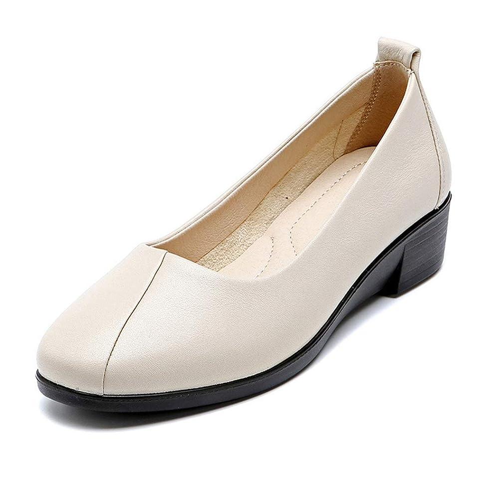 デザイナー極端な考えた[実りの秋] シニアシューズ レディース 25.0CMまで お年寄りシューズ 疲れにくい 滑り止め 婦人靴 モカシン 介護用 軽量 安定感 通気性 高齢者 母の日 敬老の日 通年