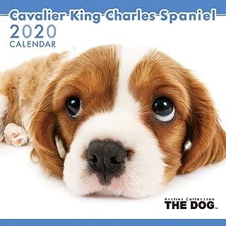 The Dog Wall Calendar 2020 Cavalier King Charles Spaniel