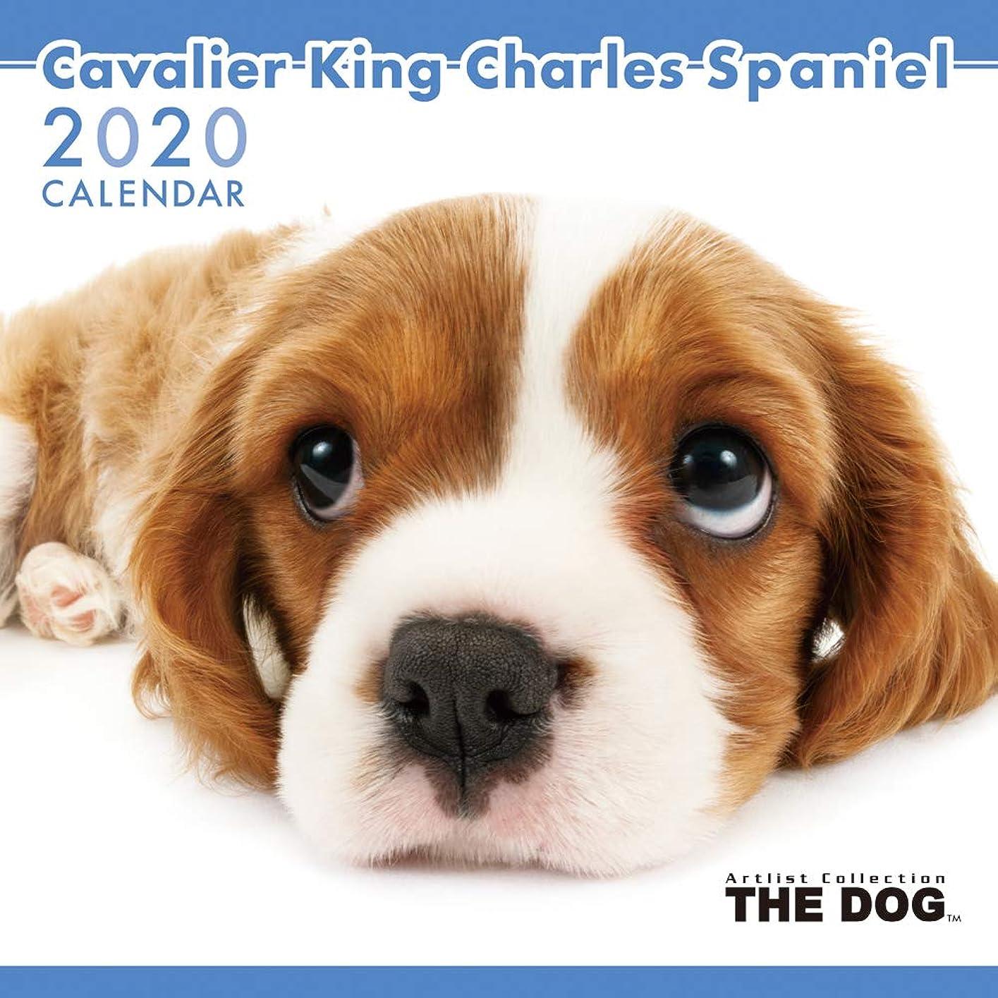 価格スクリューコーラスアーリスト 2020 THE DOG カレンダー キャバリアキングチャールズスパニエル