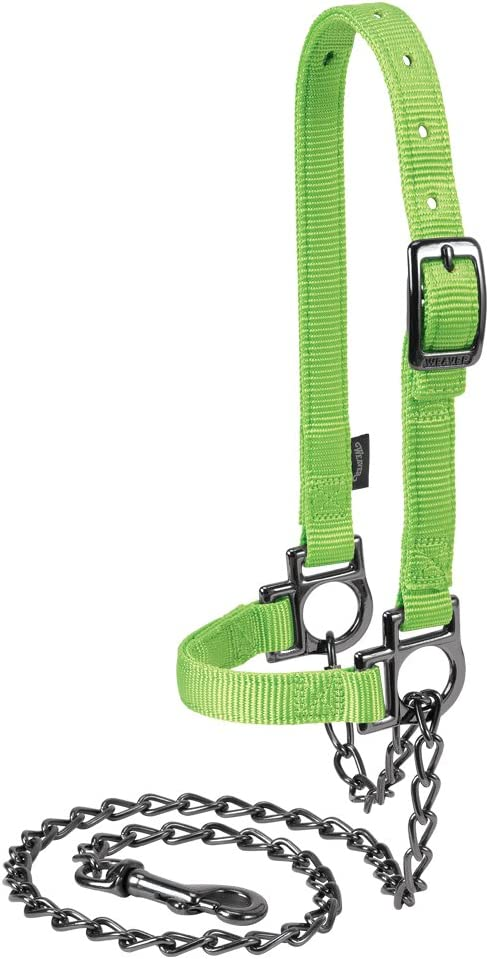 Weaver Leather Bargain sale Nylon Adjustable Sheep with Chain Max 61% OFF Lead Halter