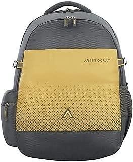 ARISTOCRAT ZYLO 2 Backpack Grey