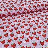 Schickliesel Jersey Stoff Meterware ab 50cm Fresh Fruits
