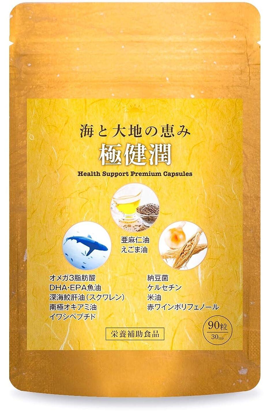 スタンド合併症鎮静剤極健潤 オメガ3 DHA EPA サプリメント 深海鮫肝油 納豆菌 ケルセチン 亜麻仁油 えごま油 30日分