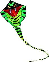sport kite flying