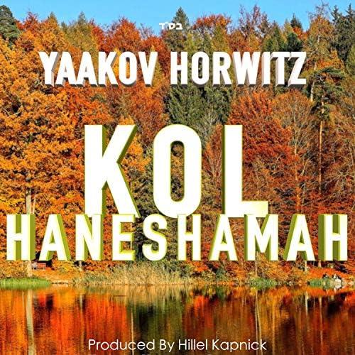 Yaakov Horwitz