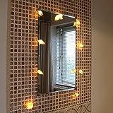 batteriebetriebene Muschel Lichterkette, 10 LEDs warmweiß, echte Muscheln, 1,5m, von Festive Lights - 4
