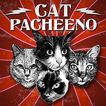 Cat Pacheeno