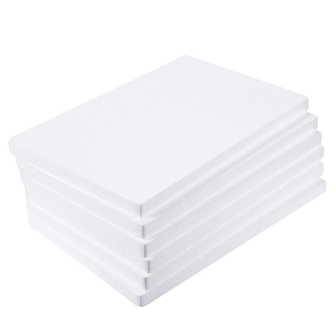 Craft Foam Block - 6-Pack Rectangle Polystyrene Foam Brick - Styrofoam Blocks for Sculpture, Modeling, DIY Arts and Crafts - White, 17 x 11 x 1 inches