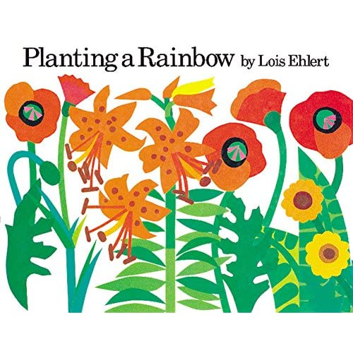 Amazon Com Planting A Rainbow 9780152046330 Lois Ehlert Books