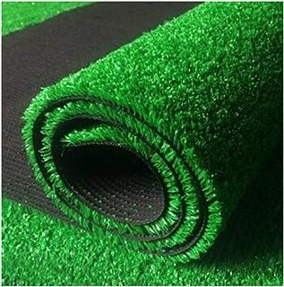 YNFNGX 25mm Pile Height Encryption Artificial Lawn Carpet Garden Terrace Outdoor Fake Lawn 2x1m (Color : Summer grass, Siz...