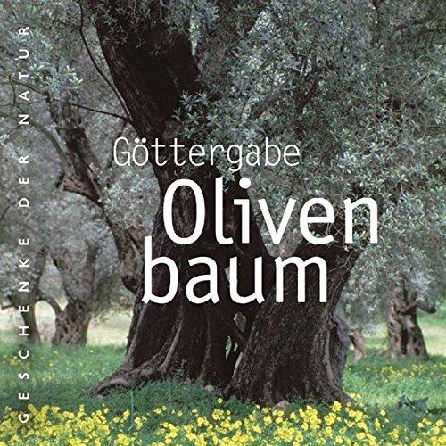 Göttergabe Olivenbaum