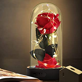 Beauty and The Beast Rose,Enchanted Red Silk Rose Lamp with 2 Mode LED Fairy String Lights,Best Gifts for Her for Valentin...