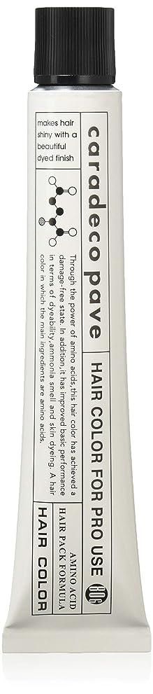 ネットレモンヒール中野製薬 パブェ アッシュBr Hp 80