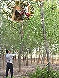 26 Feet Tree Pole Pruner 8Poles Saw Trimmer Shear Cutter Fiskers Pruning Coconut