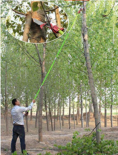 26 Feet Tree Pole Pruner 8Poles Saw Trimmer Shear Cutter Fiskers Pruning Coconut Branch Georgia