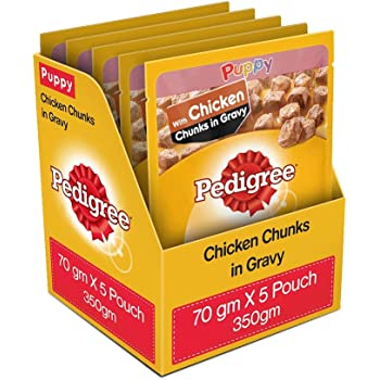 Pedigree Puppy Wet Dog Food, Chicken Chunks in Gravy, 5 Pouches, 70 g (Pack of 5)