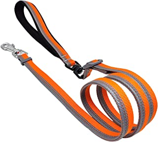Mycicy Reflective Nylon Dog Leash (4-6Ft) Adjustable Length with Soft Padded Handle, Heavy Duty Pet Lead Leash for Medium Small Puppy