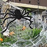 onozio Decoración de Halloween, tela de araña...