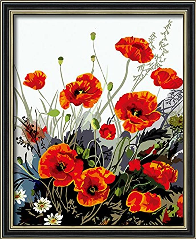 Diy oil painting, paint by number kit- Red Poppy 1620 inch.