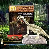 Wivilly Dinosaurios Fósiles Excavación Kit,...