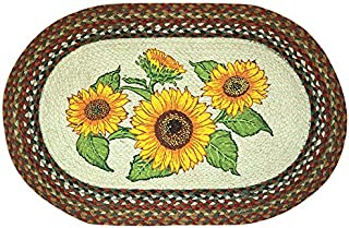 Earth Rugs 65-300S Rug, 20 by 30