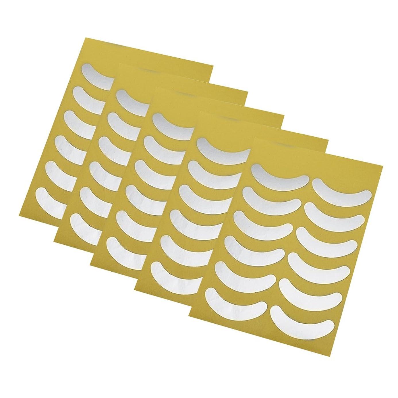 ステーキパイプラインとは異なりBlesiya 5枚 使い捨て アイシャドーシール アイシャドー ステッカー 保護 テープ メイクアップ 化粧用 化粧初心者 便利