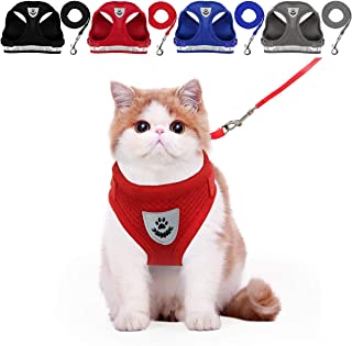 Best cat harness ebay Reviews