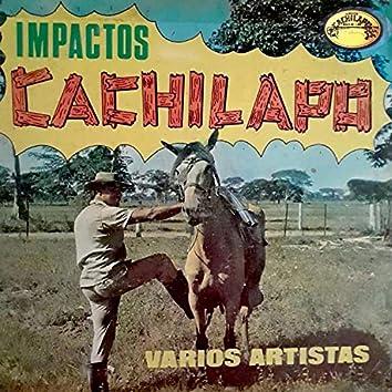 Impactos Cachilapo