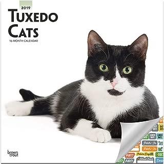 Tuxedo Cats Calendar 2019 Set - Deluxe 2019 Tuxedo Cats Wall Calendar with Over 100 Calendar Stickers (Tuxedo Cats Gifts, Office Supplies)