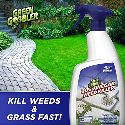 Green Gobbler 20% Vinegar Weed & Grass Killer   Natural and Organic   1 Gallon Spray   Glyphosate Free Herbicide