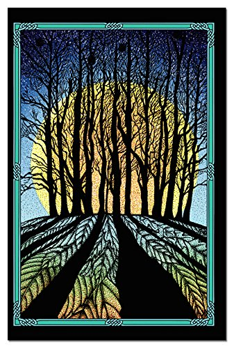 """Tree-Free Greetings 12-Count Winter Solstice Card Set with Envelopes, 4"""" x 6"""", Celtic Verse (93453)"""