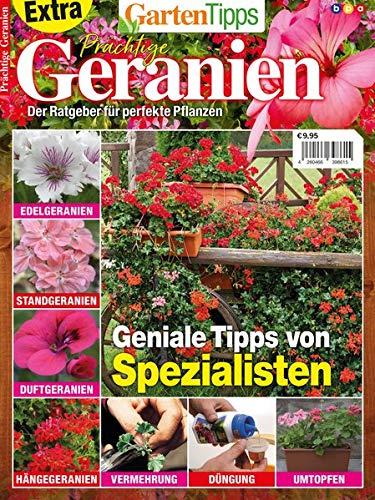 GartenTipps Extra - Prächtige Geranien: Der Ratgeber für perfekte Pflanzen