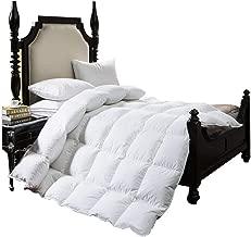 BTWZM Luxurious Goose Down Comforter Queen Duvet Insert Solid White 750+Fill Power Hypoallergenic 100% Cotton Shell Down Proof - Corner Duvet Tabs - Machine Washable (Queen)