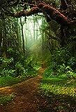 Fondo de fotografía de Primavera Hierba de Pascua Bosque de Hadas Foto de Vinilo Fondo de Estudio fotográfico Accesorios de fotografía A10 10x10ft / 3x3m