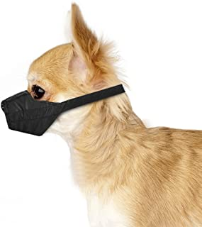 dog muzzle for chihuahua