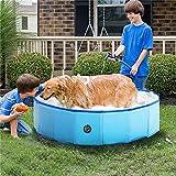 Piscina plegable para mascotas, piscina para niños pequeños, piscina sobre el suelo para niños pequeños, bañera portátil para gatos, perros, jardín al aire libre, azul, 80 x 30 cm (31 x 12 pulgadas)
