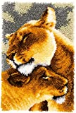 BambooZ DIY Lion Latch Hook Rug Kits for Adults - Beginners - Kids - Children with Pattern Printed Canvas DIY Rug Crochet Patterms Yarn Kits, Embroidery Decoration | 20' x 15' (52cm x 38cm)
