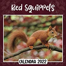 Red Squirrels 2022 Calendar: Red Squirrels mini calendar 2022 2023, Red Squirrels 2022 Planner with Monthly Tabs and Notes...
