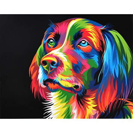 DIY Oil Painting Kit for Beginner Adults /& Kids 16 x 20 Inch Animals Pattern with 3 Brushes /& Bright Colors DIY Aacrylic Painting for Decoration Without Frame WISKALON Paint by Numbers Peacock