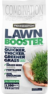 Pennington Lawn Booster Tall Fescue Grass Seed, 9.6 Pounds
