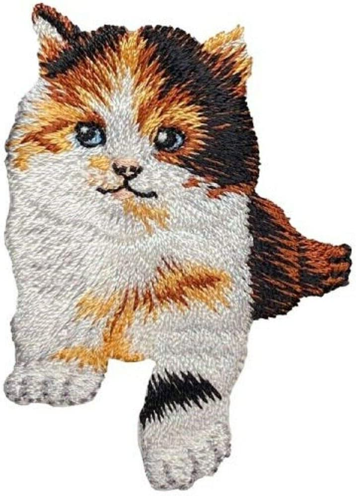 Spring new work Calico Save money Cat Applique Patch - Kitten 2-1 Iron 8