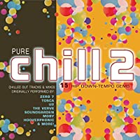 Pure Chill 2 (15 Hip Down-Tempo Gems)