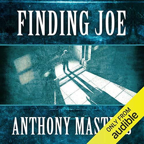 『Finding Joe』のカバーアート
