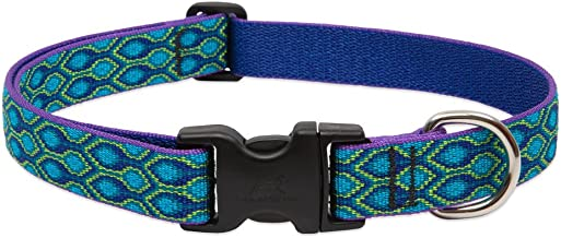 Lupine Rain Song Adjustable Dog Collar for Medium and Large Dogs