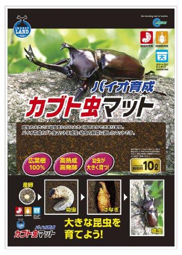Insect Land Bio Development Beetle Mat