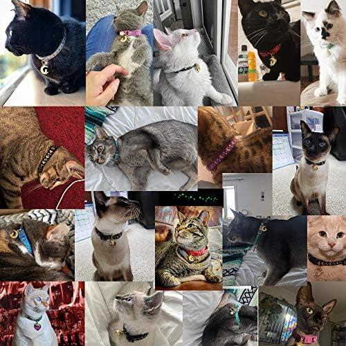Accesorios para gatos _image2