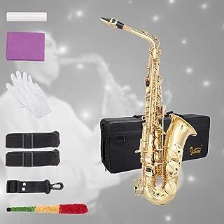 Best bundy selmer saxophone Reviews